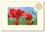 Doppelkarten Querformat Blume des Lebens - 6 Stück